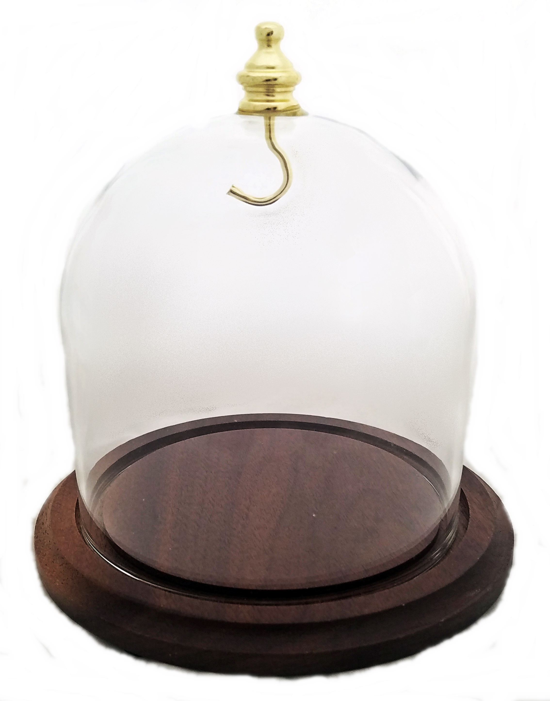 Dueber Walnut Display Dome Cloche
